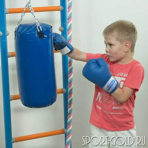 Аксессуар для ДСК ROMANA Перчатки боксерские детские Фото 1
