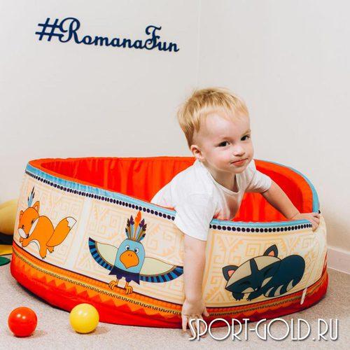 Сухой бассейн ROMANA Индейцы без шариков Фото 1