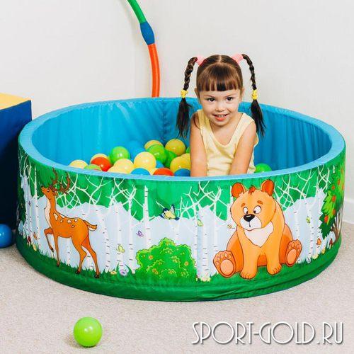 Сухой бассейн с шариками ROMANA Зверята 100 шариков Фото 1