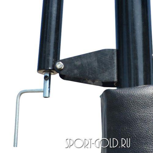 Баскетбольная стойка DFC STAND56P Фото 2
