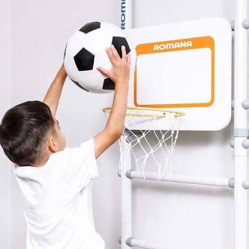 Аксессуар для ДСК ROMANA Dop12 - Баскетбольный щит Фото 1