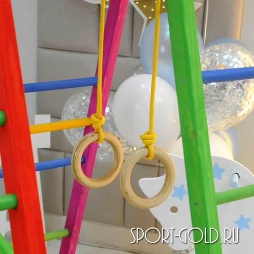 Детский спортивный комплекс Perfetto Sport KIDS Pappagallo Allegro PS-231 Фото 5
