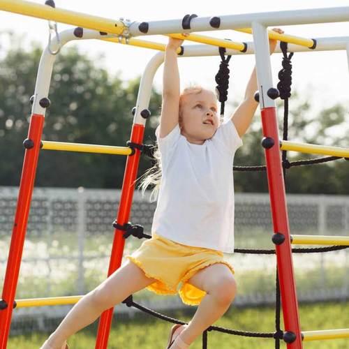 Детский спортивный комплекс для дачи ROMANA Богатырь Плюс - 2 NEW Фото 6