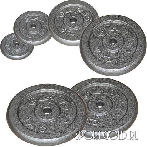 Диски для штанги Larsen NT118, 31 мм, окрашенные серые