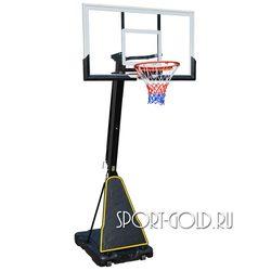 Баскетбольная стойка DFC STAND60P