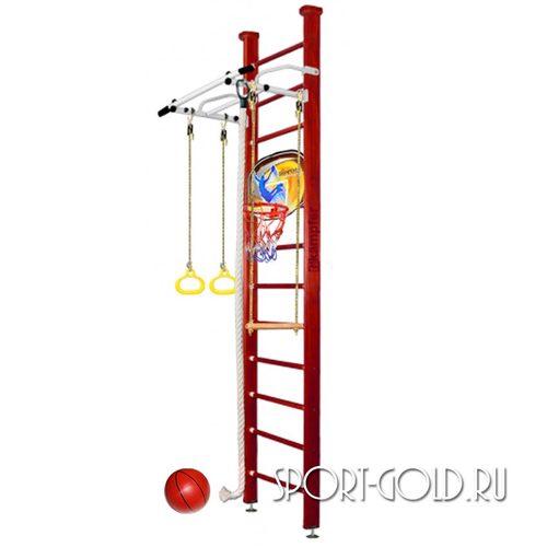 Детский спортивный комплекс Kampfer Helena Ceiling Basketball Shield 3.0 м, Вишневый