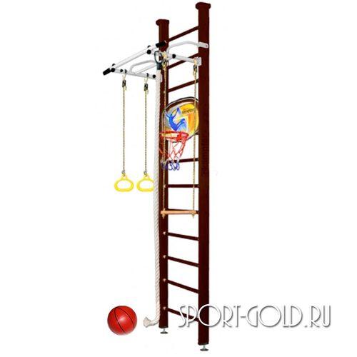Детский спортивный комплекс Kampfer Helena Ceiling Basketball Shield 3.0 м, Шоколадный