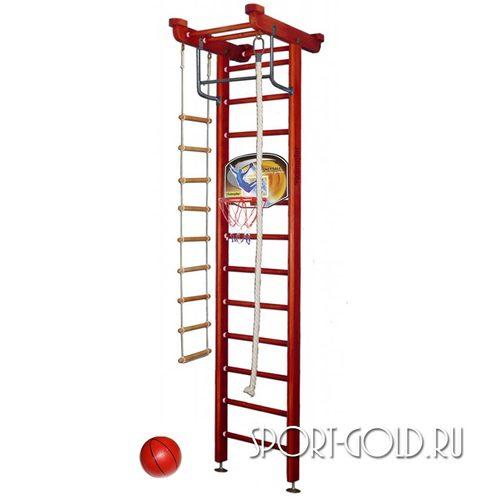 Детский спортивный комплекс Kampfer Little Sport Ceiling Basketball Shield 3.0 м, Вишневый